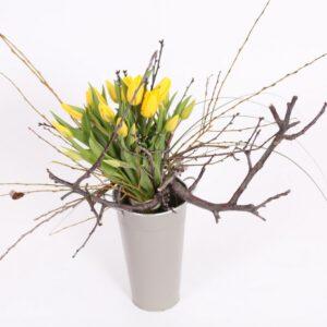 Bouquet Tulipa